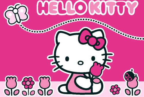 AW Szőnyeg Hello Kitty Butterfly (95x133cm)