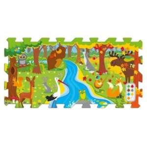 Erdei móka szivacs Puzzle 30308621