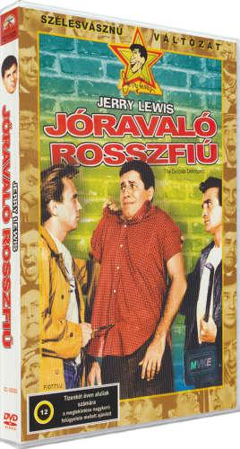 Jóravaló rosszfiú - DVD