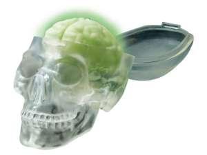 4M világító koponya készlet 31034161 Tudományos és felfedező játék
