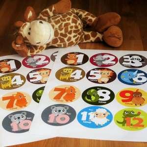 Hónapforduló matrica Állatok 31199362 Fotózási kellék