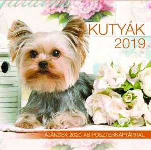 2019 naptár: Kutyák 31396219 Naptár