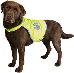 Trixie fényvisszaverő biztonsági mellény kutyáknak (S   Nyakkörméret: 28-42 cm   Haskörméret: 39-50 cm) 31454841 Kisállat ruházat (ruha, cipő)